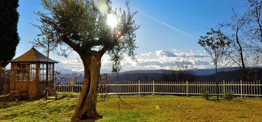 giardino-solarium-1-hotel-antico-pastificio-sarubbi-stigliano